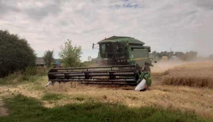 В Іллінцях побили фермера і зібрали його урожай! Поліція охороняла «зернових» рейдерів?